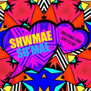 Image result for diwrnod sumae shwmae